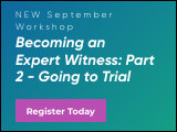 Becoming an Expert Witness: Part 2 - Going to Trial