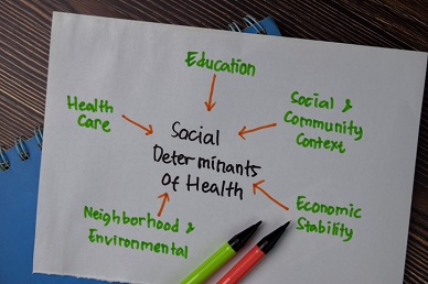 Getting to Know the Social Determinants of Health Webinar